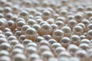 Japanese akoya cultured pearls are pictured at Ohata pearl industry, a pearl processor, in Ise, western Japan, May 27, 2009. Japan's akoya pearl industry, which began in the 1890s when Kokichi Mikimoto created the world's first cultured pearls, is facing collapse due to plunging sales and stiff competition from China. REUTERS/Yuriko Nakao